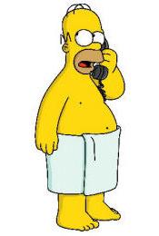 Homer-toalla