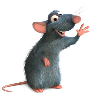 ratatouille-pic